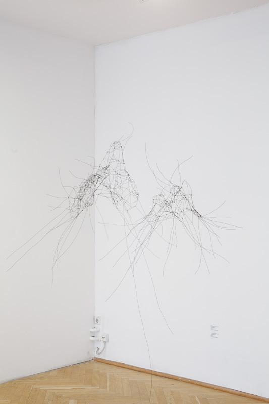 Brigitte Schwacke: Volumen I und Volumen II, 2008