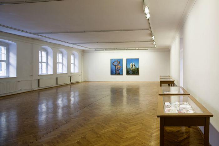 Ausstellungsansicht; Foto: David Brandt (Riefenstahl Dyptichon)