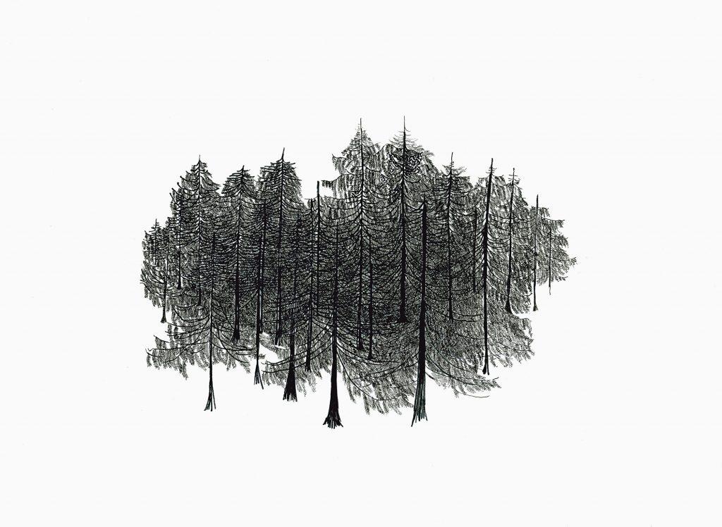 Tannenwald, 2012, Filzstift auf Papier, 21 × 30 cm