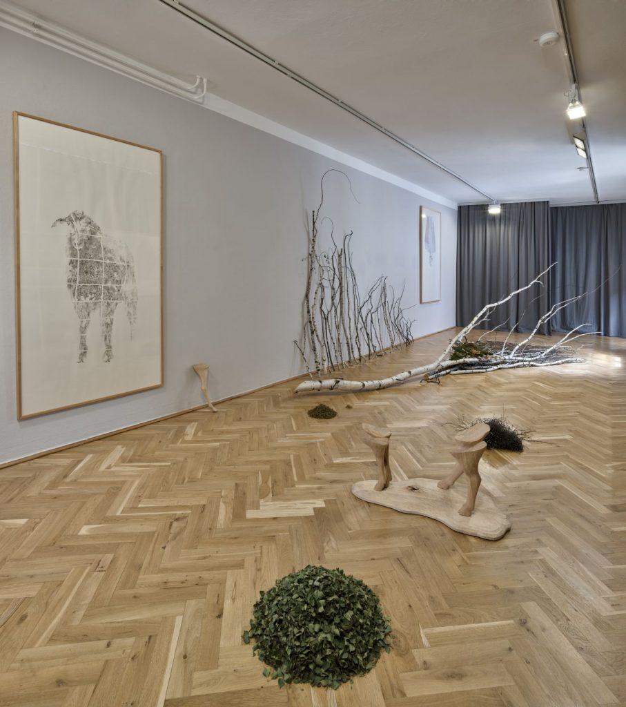 Ausstellungsansicht: Eine Schwalbe macht noch keinen Sommer, Foto: Volker Kreidler