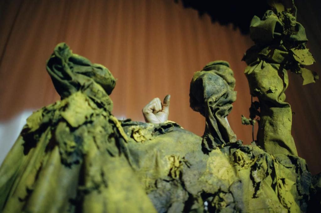 Fungal Follies, five-headed mushroom muppet conglomerate