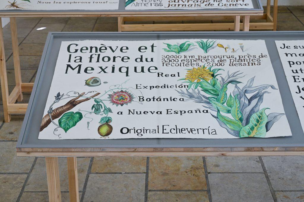Patricia Esquivias, Geneva Drawings, Les Fleurs des Dames de Geneve (Die Blumen der Damen von Genf) (2020), Foto: Anja Schneider