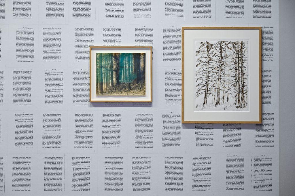 Antje Majewski, Der Wald (2019), Installation, Foto: Anja Schneider