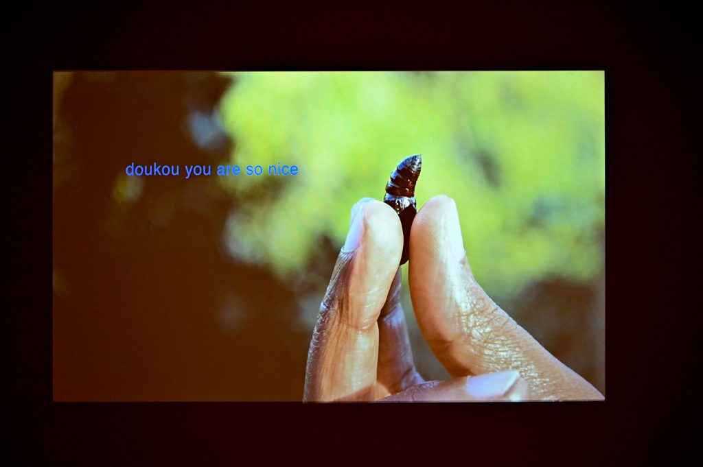 Minia Biabiany, toli toli (2018), Video, 10:14 min, Foto: Anja Schneider