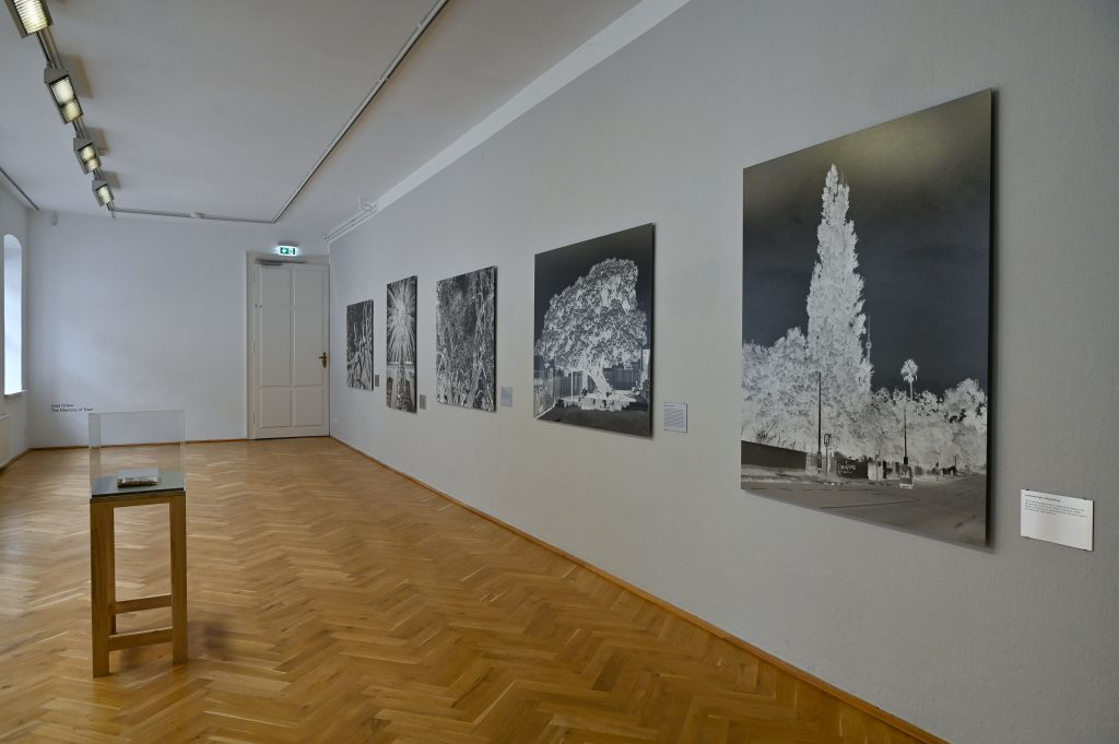 Uriel Orlow, The Memory of Trees (2016), Foto: Anja Schneider