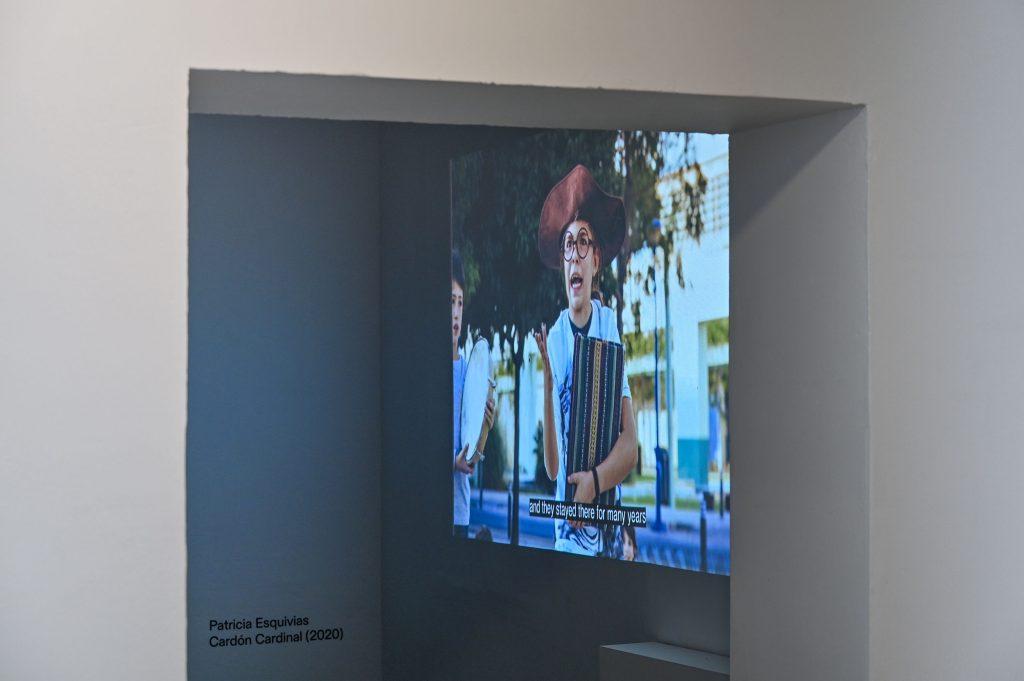 Patricia Esquivias, Cardón Cardinal (2020), Video, 38:00 min, Foto: Anja Schneider