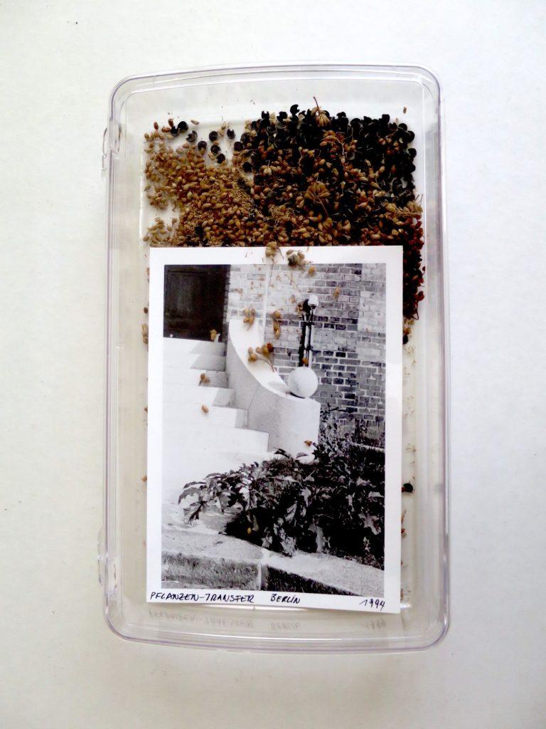 Lois Weinberger, Pflanzen-Transfer Berlin, 1994